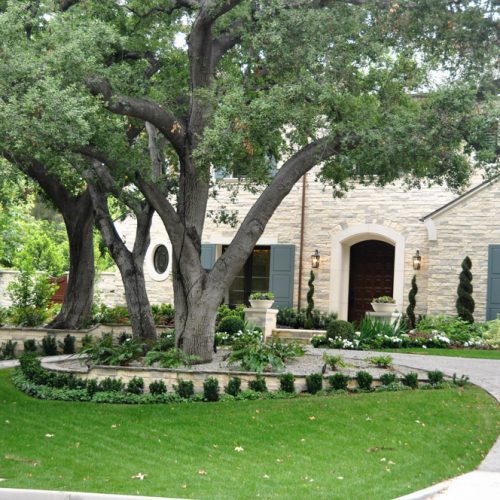 front lawn with nice trees